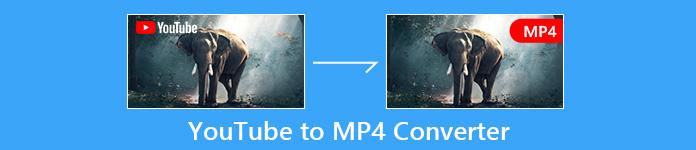YouTube zu MP4 Konverter