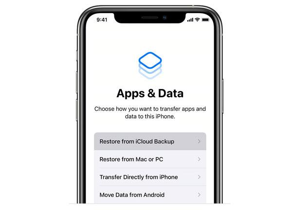 Apps-Datenwiederherstellung von der iCloud-Sicherungsschnittstelle