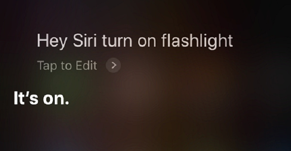 Ask Siri To Turn On Flashlight