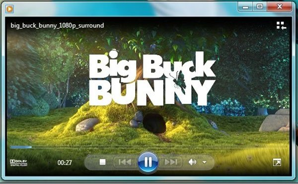 Standbild aufnehmen Windows Media Player