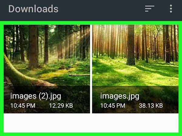 Androidでダウンロードを削除する
