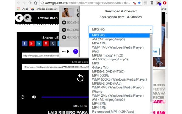 Download Streaming Video Chrome