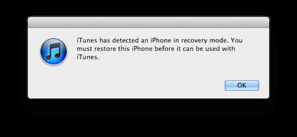 Öffnen Sie die iTunes