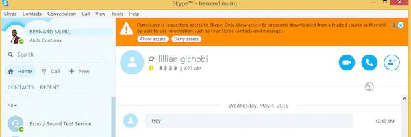 Pamela Access Skype