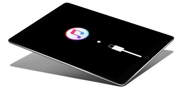 Versetzen Sie das iPad in den Wiederherstellungsmodus