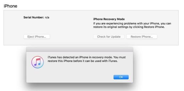 リカバリーモードでiPhoneを復元する