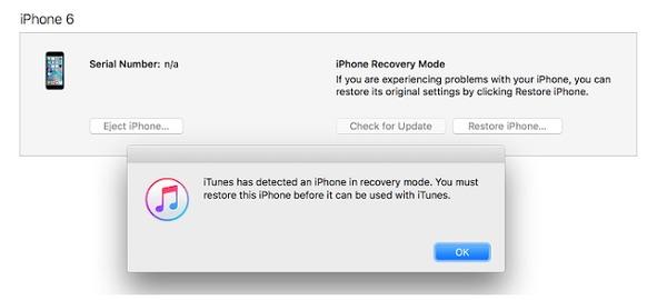 Verwenden Sie den Wiederherstellungsmodus, um das iPhone zurückzusetzen