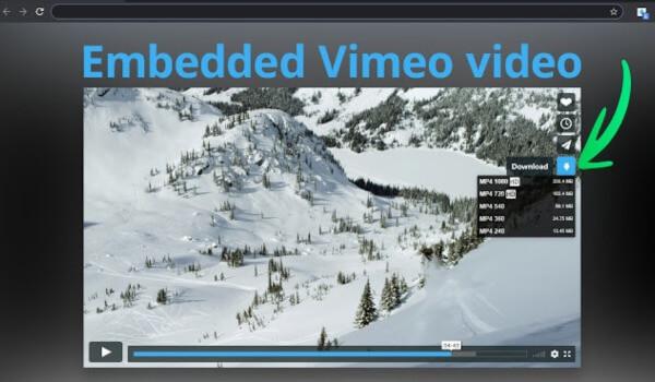 Vimeo Video Downloader Chrome-Erweiterung