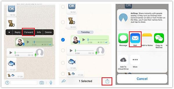 Enregistrer WhatsApp Audio iPhone sélectivement